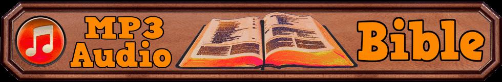 MP3 Audio Bible NIV KJV